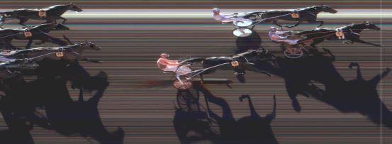 Målfoto for løp 11 på bane MO den 21.03.2015